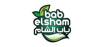 bab elsham